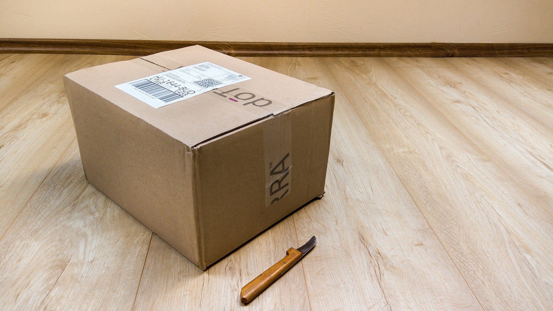 Russian post will make Aliexpress Plus home-package delivery for free